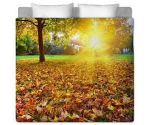 Препоръки за успешна подготовка за есента, 2020